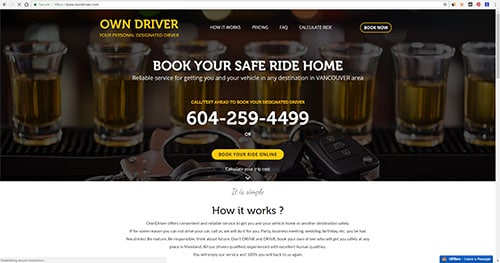 Web development seo services web analyses by deon designs for Designated driver service business plan